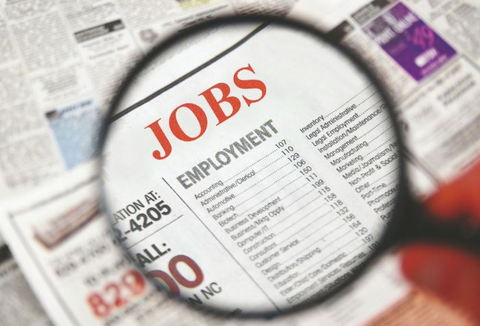 Jobs Section