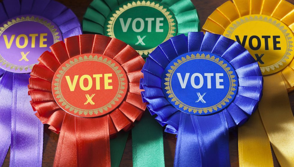 Political party rosettes