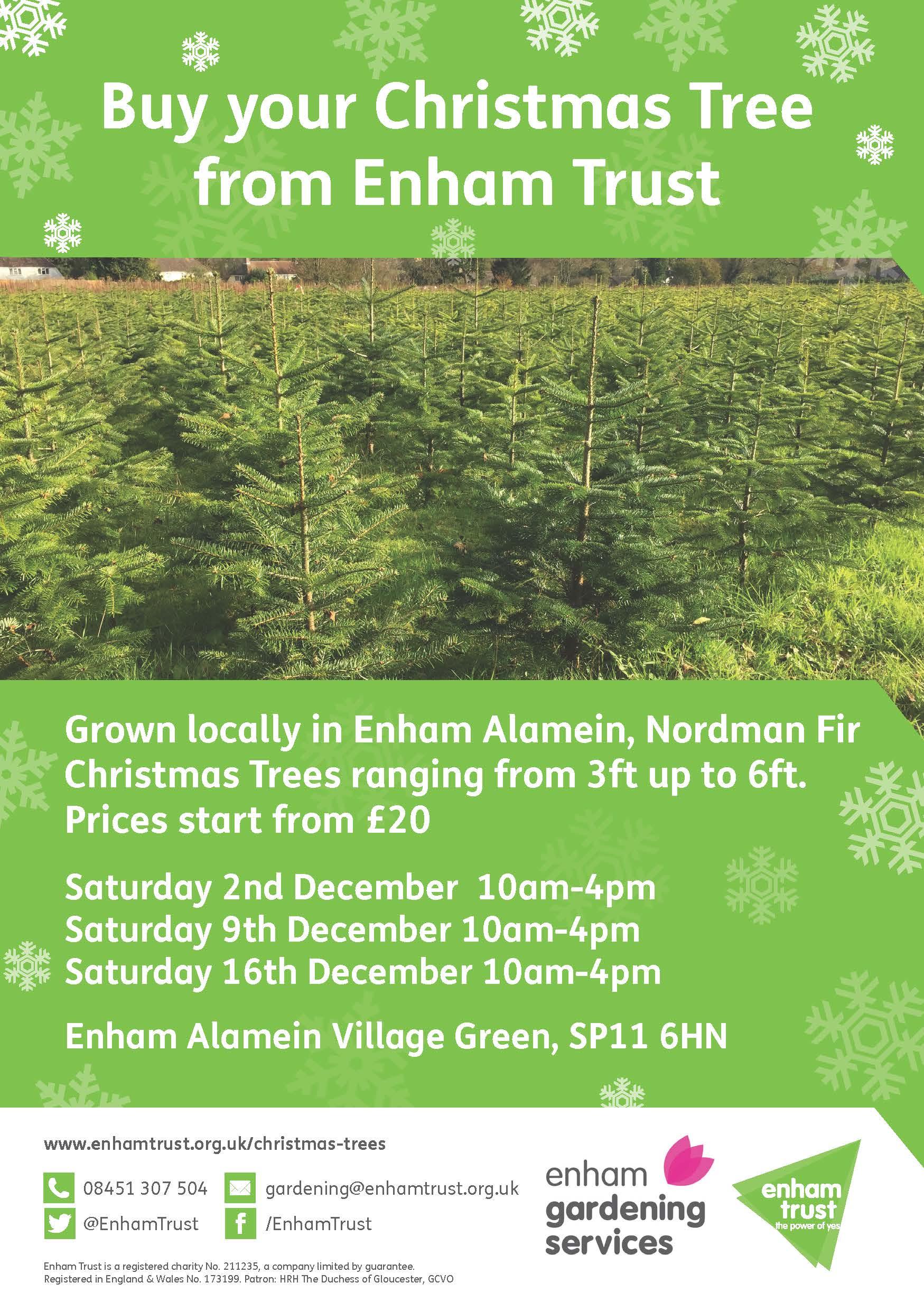 Enham Trust christmas tree advert