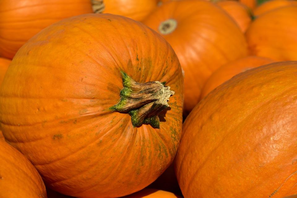 October Half Term fun in Andover, Hampshire