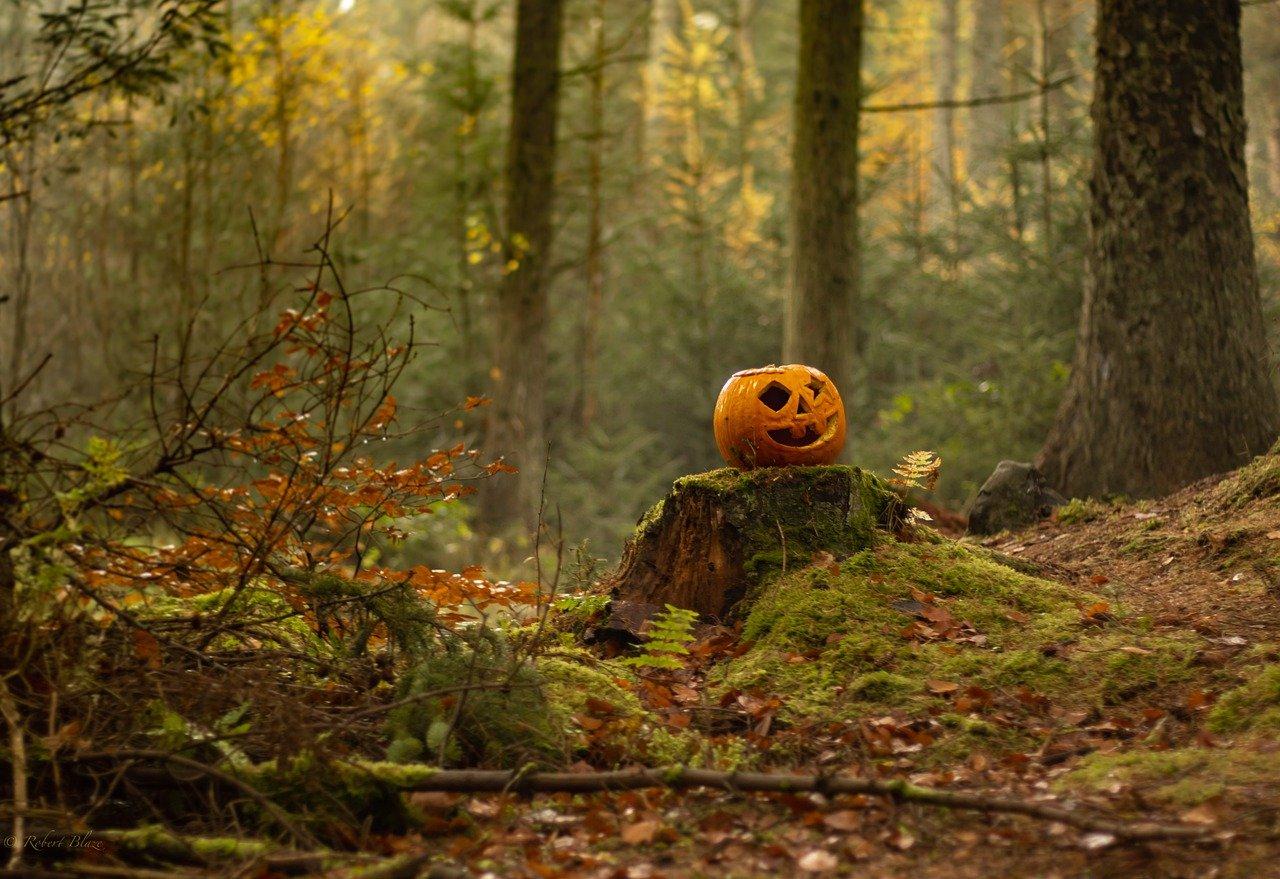 Spooky Halloween fun for children in Andover