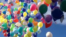 Salisbury Hospice Balloons Andover