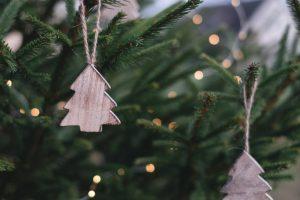 Christmas Tree Nordman Fir Andover