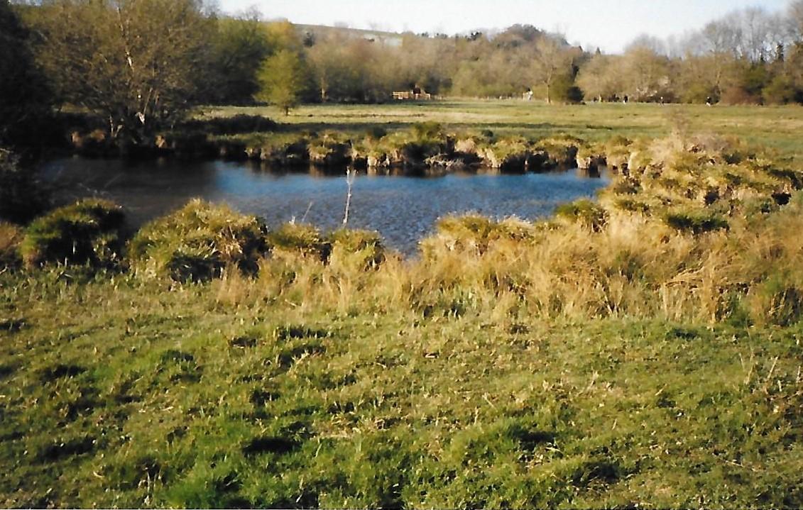 Chilbolton Cow Common