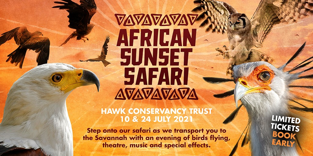 African Sunset Safari 1024×512