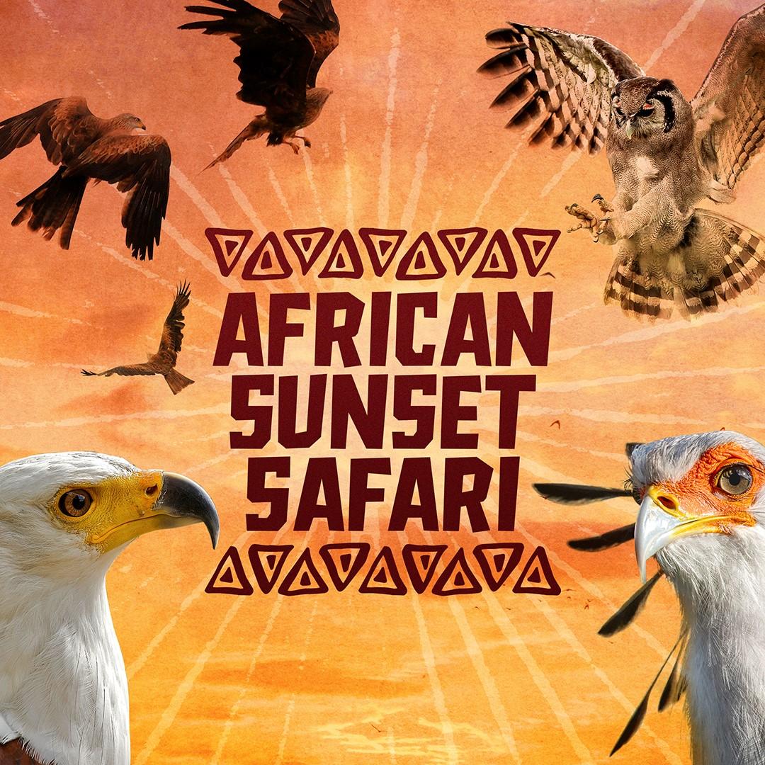 African Sunset Safari 1080×1080 (no text)